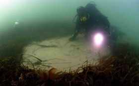 eel grass scoured by chain