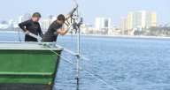 Eco-Mooring System Selected for Long Beach's Belmont Pier